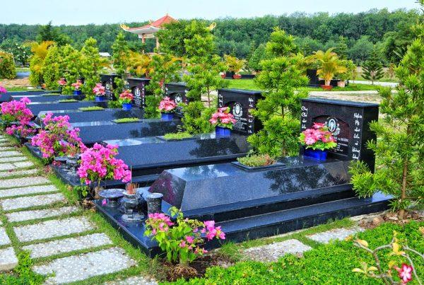 tình người trong mua bán đất nghĩa trang