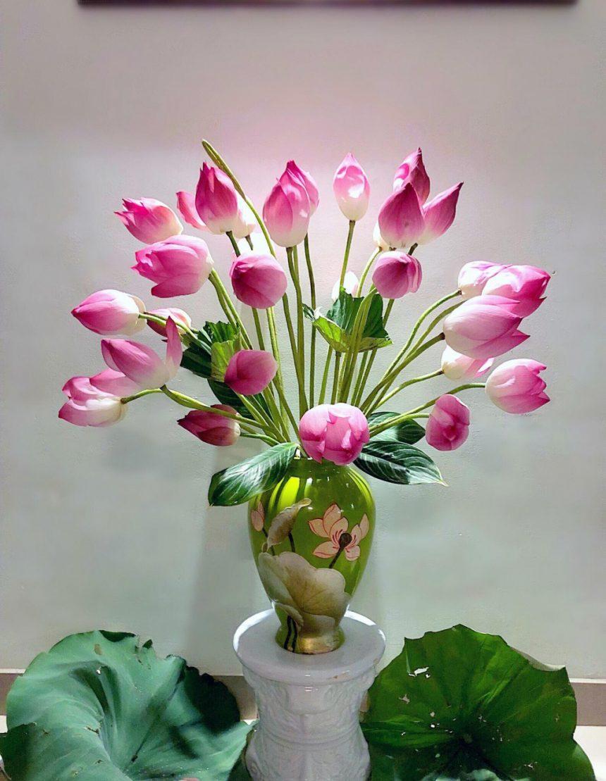 Hoa sen - loài hoa mộc mạc nhưng không kém phần sang trọng, thanh khiết