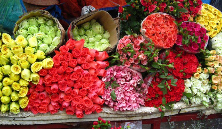 """Ý nghĩa của hoa hồng là """"tràn đầy hạnh phúc"""""""