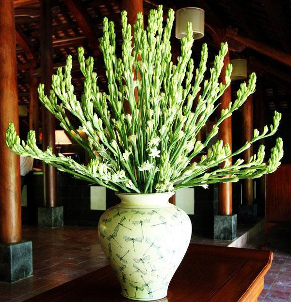 Hoa huệ tượng trưng cho sự thanh khiết