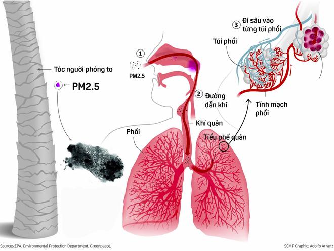 Bảo vệ bản thân trước tình trạng ô nhiễm không khí