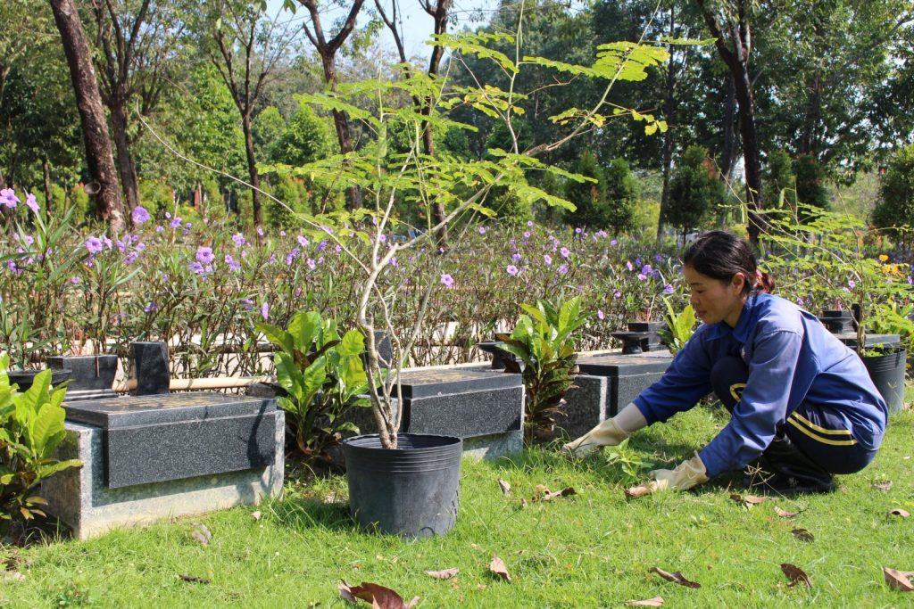 Nhân viên chăm sóc mộ phần tại Hoa viên Nghĩa trang Bình Dương