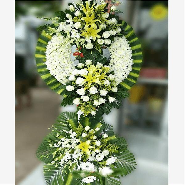 hoa cúc trắngthì bày tỏ cho sự tái sinh một sự sống mới